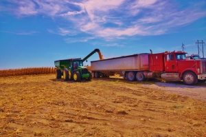 Grain Cart Unloading into Semi